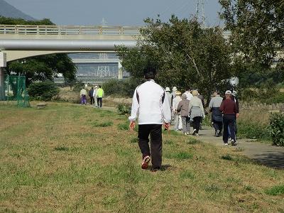 十分準備運動ができたら、実際に遊歩道を歩いてみます。 今回は成合大橋から成合橋付近まで、往復1kmほどを歩いてみました。